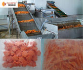 Carrot Beverage Processing Plant Full Automatic Easy Operation 1 Year Warranty