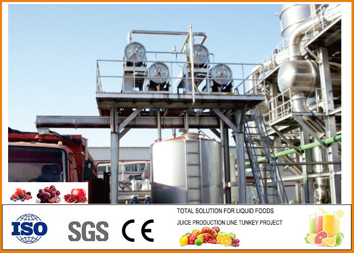 10T/H Beverage Processing Plant , Complete Automatic Blueberry Processing Line